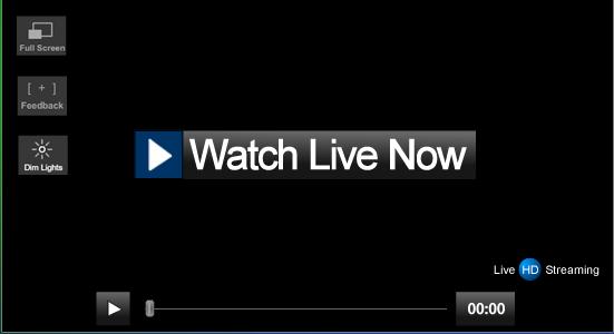 Watch Greys Anatomy Season 10 Episode 17 Online Watch Tv Show